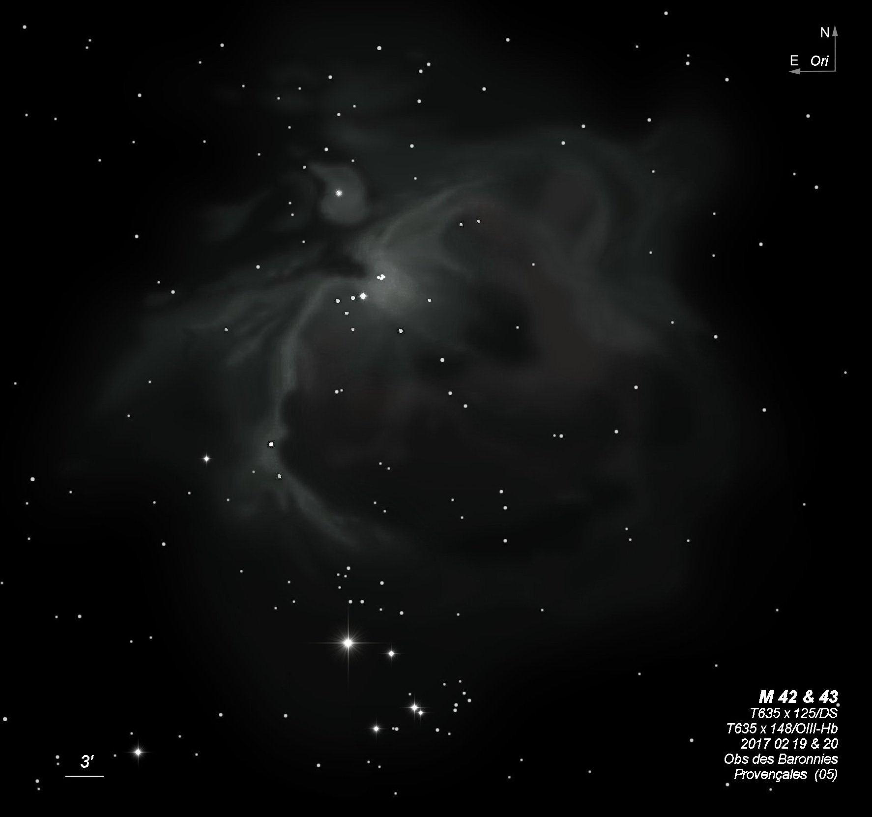 M 42 43  T635 BL 2017 02 19&20 field large.jpeg