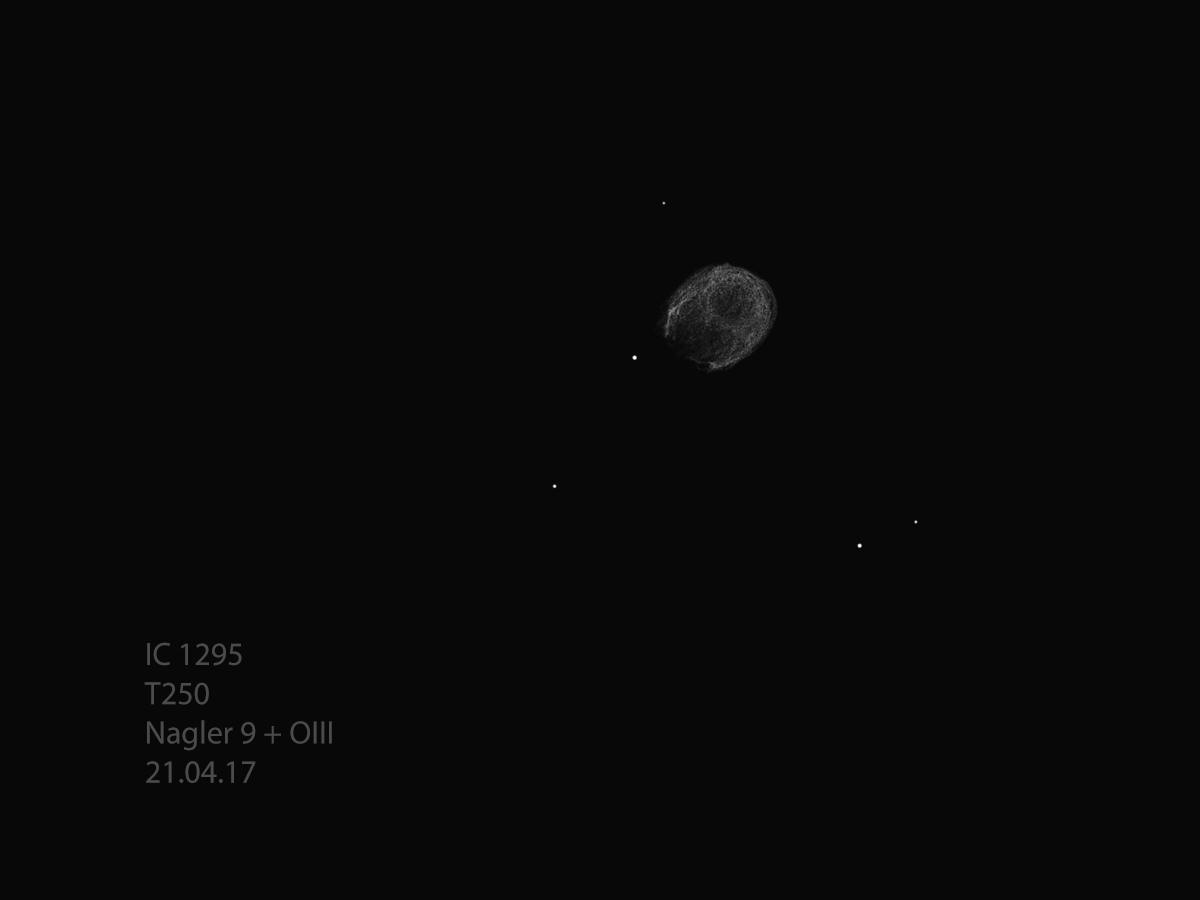 IC1295_T250_17-04-21.jpg