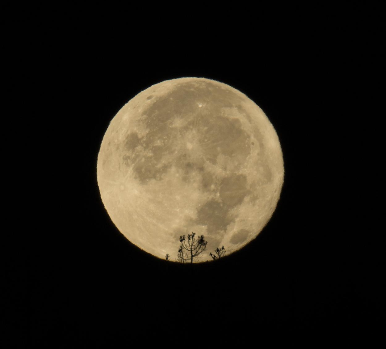la lune,  au matin du 06/10/2017  (31650 rawjpegasreca.jpg)
