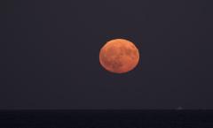 la lune, au soir du 05/10/2017  (31532 rawjpegas.jpg)