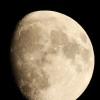la lune, le soir du 31/10/2017  (500033379.JPG)