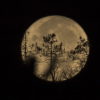 la lune,  au matin du 05/10/2017  (31515 rawjpegas.jpg)